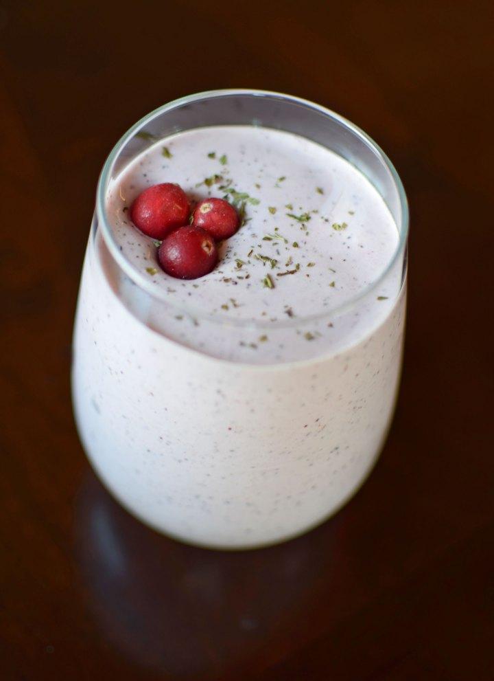 Cranberry-Peppermint Protein Smoothie Portrait