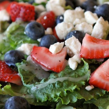 The Red White and Blue Sweet Summer Salad Portrait