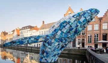 Μια φάλαινα 30 μέτρα ύψους από πλαστικό στη Bruges στο Βέλγιο!