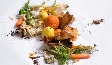 Η Ελλάδα 3η στον κόσμο στη σπατάλη τροφίμων