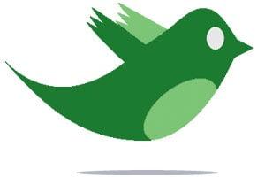 How Green Ruled Twitter