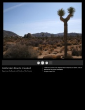 California's Mohave Desert. Source: The Nature Conservancy