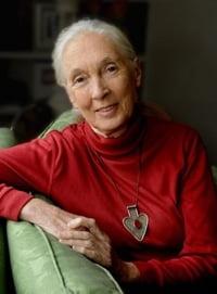 Dr Jane Goodall