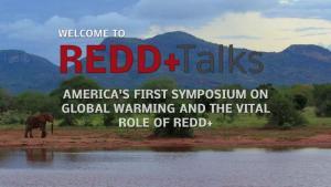 CODE REDD+ TALKS
