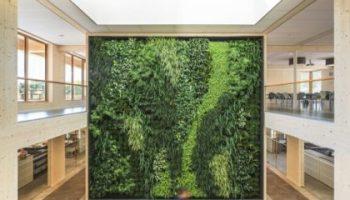 Green building green wall