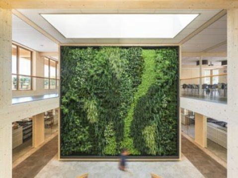 Green building green wall