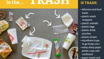 how to make your eco-traveler more green with properly using the trash