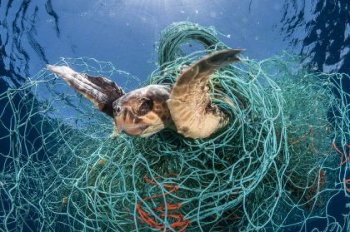 World's biggest seafood companies must address lost fishing gear