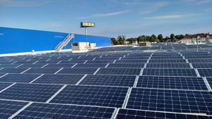 IKEA, Norfolk, Community Solar