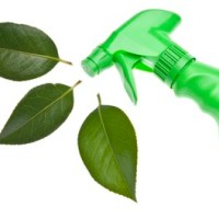 3 Eco-Friendly Household Cleaning Solutions