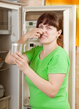 5 Natural Remedies for Deodorizing a Refrigerator