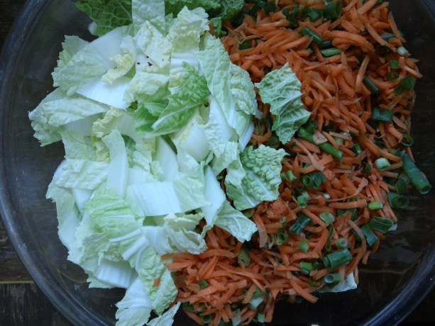 cabbage and carrots for homemade kim chi