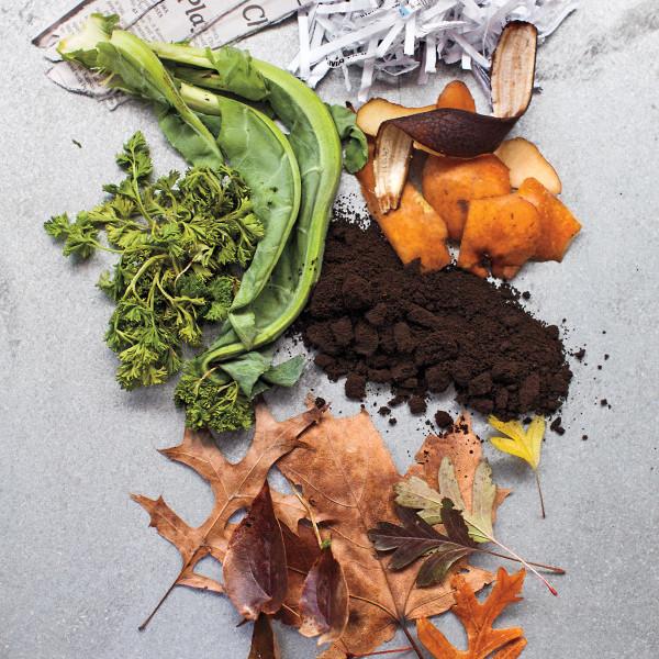 composting scraps