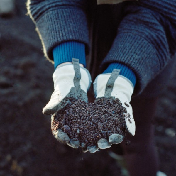 composting Season 2 composting soil: black gold!
