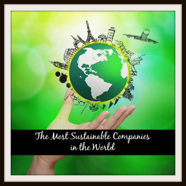 Image result for sustainable companies images