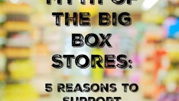 myth of the big box stores