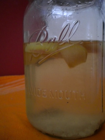 homemade water kefir