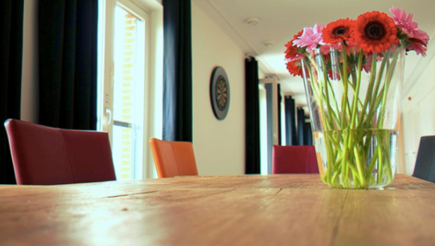5 Eco-Friendly Tips When Decorating Your Home