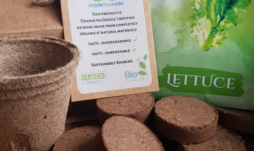 Get them growing with a Plant Growing Kit, an eco-friendly and plastic-free gift idea