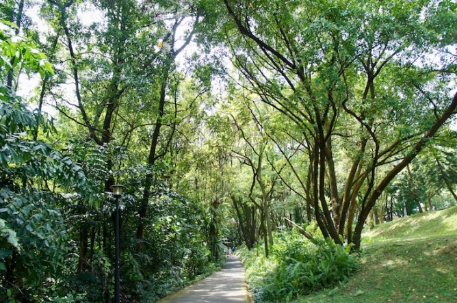 greenlooksgreat Singapur Fort Canning Park