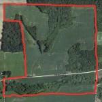 Future Farm? – Pine Island