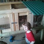 Chicken Prison