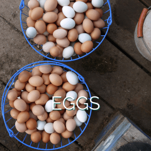 Baskets of Eggs