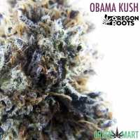 Obama Kush by Oregon Roots