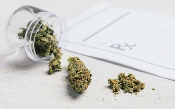 UN Drug Commission on Cannabis Research