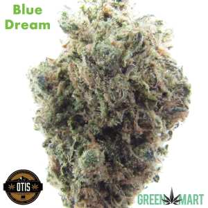 Otis Gardens - Blue Dream