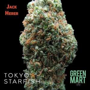 Jack Herer by Tokyo Starfish