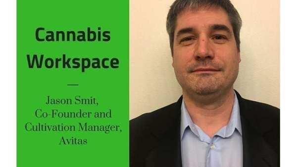 How Avitas' Jason Smit Works: Cannabis Workspace
