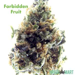 Forbidden Fruit by Pacific Grove