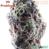 99 Problems by Cloud Cover Cannabis