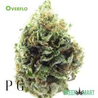 Overflo by Pacific Grove