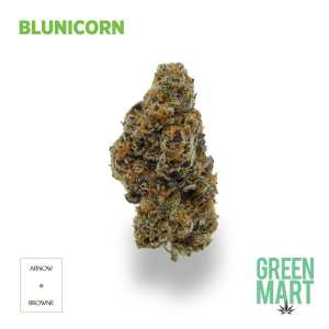 Blunicorn by Arnow Browne