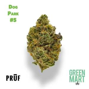 Dog Park #5 by Pruf Cultivar