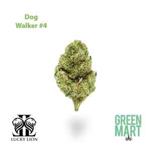 Lucky Lion Dog Walker #4 Flower
