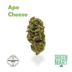 Ape Cheese
