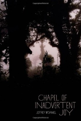 Review of Chapel of Inadvertent Joy by Jeffrey McDaniel