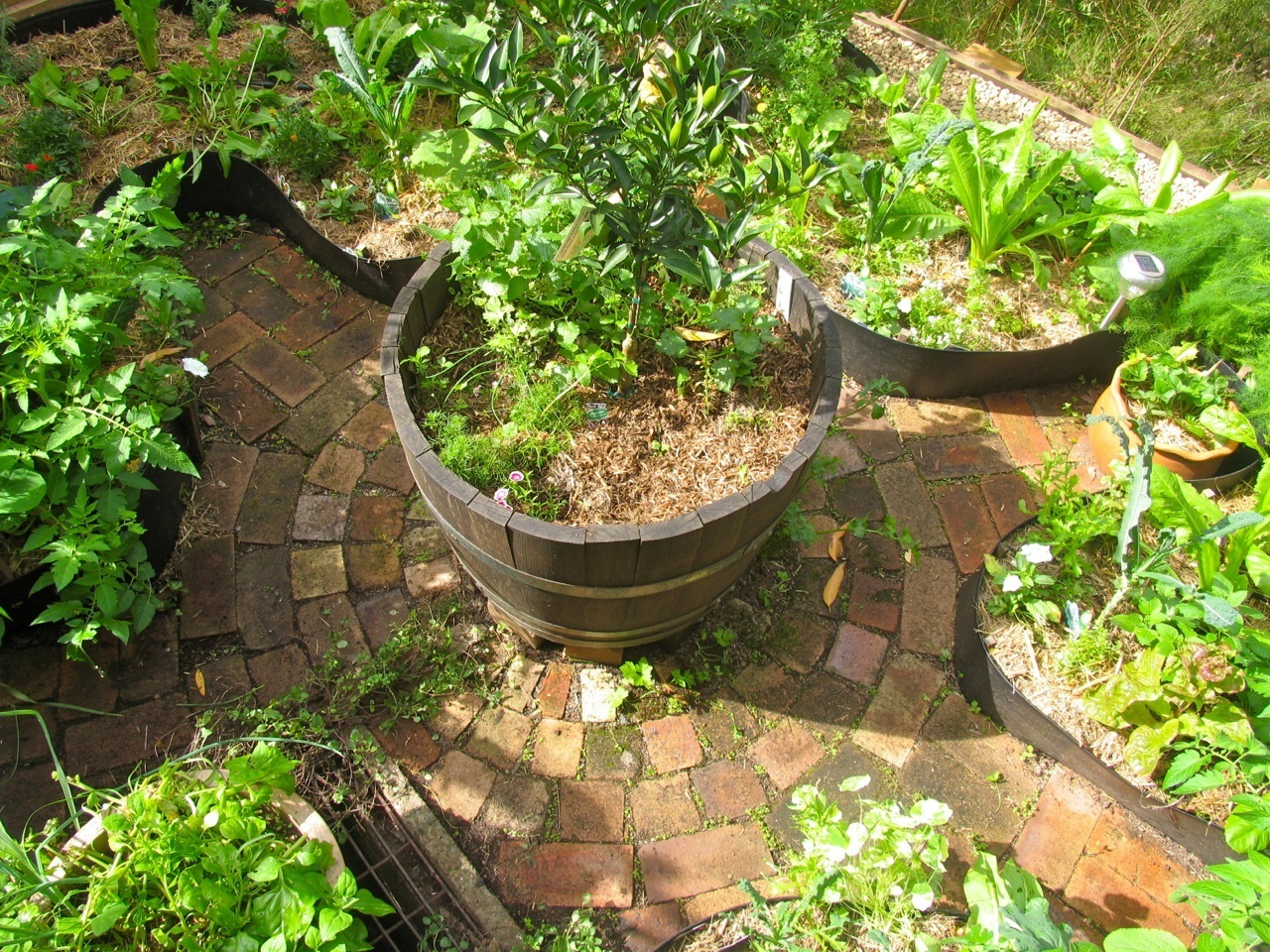 Permaculture Garden - GreenMyLife - Anyone can Garden on Backyard Permaculture Design id=93050