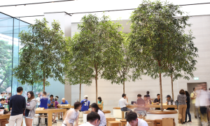 Greenology | Apple Store at Orchard Road | Singapore