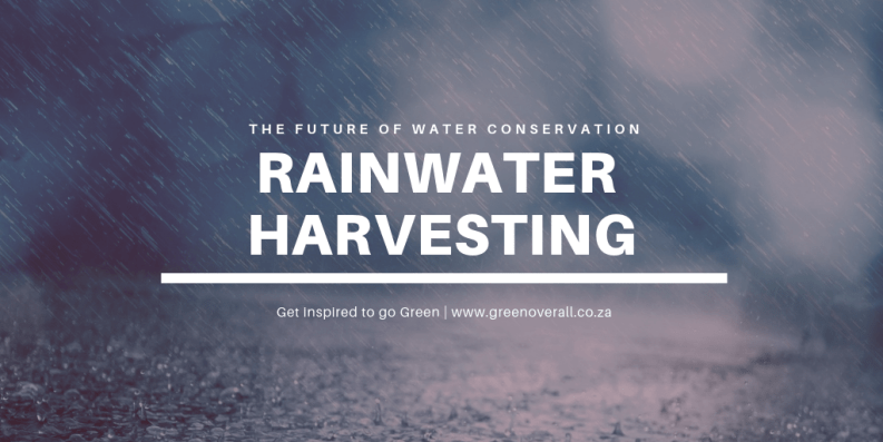 Rainwater Harvesting the Future of Water Conservation