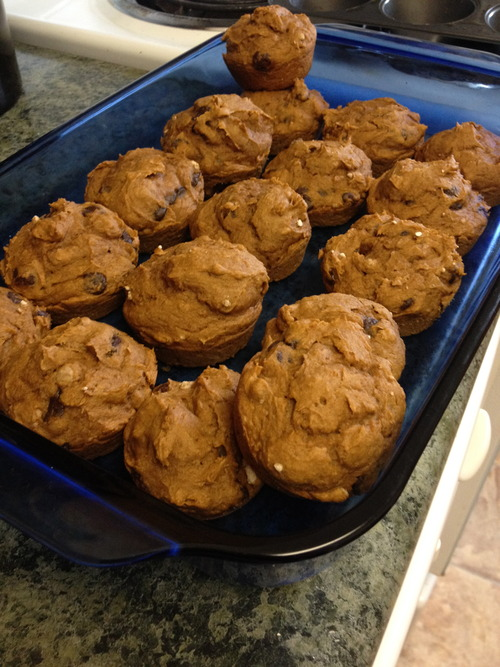 Pumpkin Spice Chocolate Chip Muffins