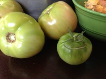 Three green tomatoes from Owl's Hollow Farm; one from my patio.