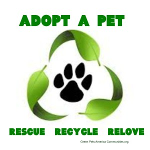 RECYCLE A RESCUE 400DPI