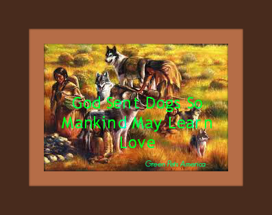 north american indian dog quote