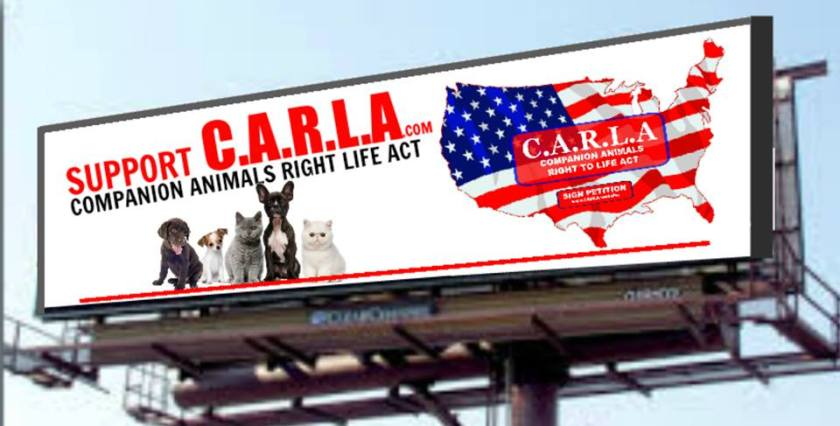 SUPPORT CARLA COMPANION ANIMALS RIGHT LIFE ACT