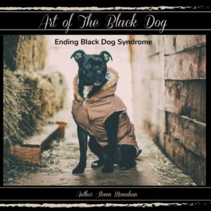 ART OF THE BLACK DOG AMAZON REVIEWS