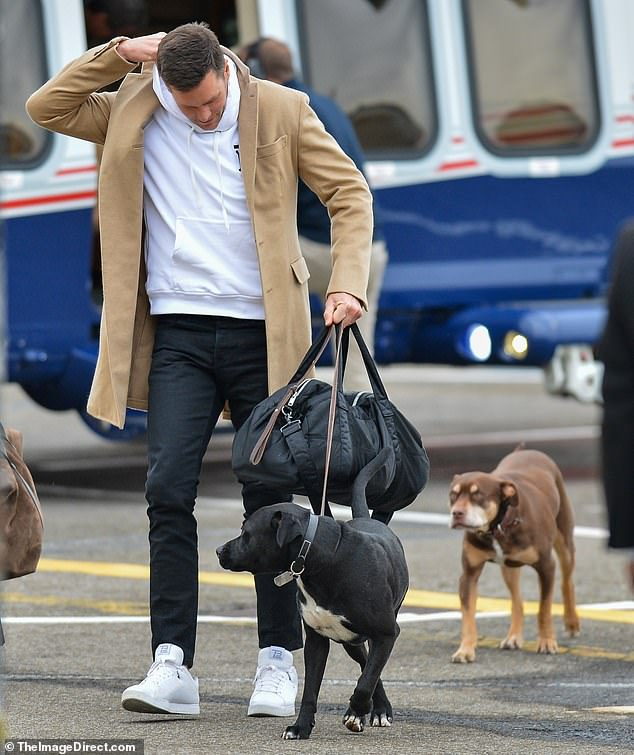 What Tom Brady and Your Dog Both Love